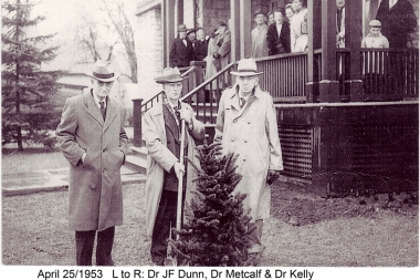 Tree-Planting-By-Three-Doctors